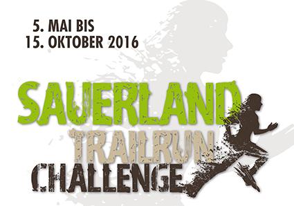 Plane_challenge_klein